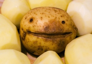 Happy Potato - Blog post 2-Jul-2014